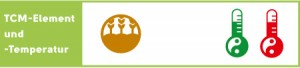 Kürbissuppe - 5-Elemente-Einteilung