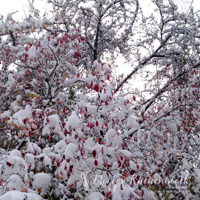 Wintereinbruch vor der Verlagstür im Oktober