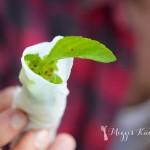 Kulinarische Reisepost aus Vietnam Teil 3 – Hue