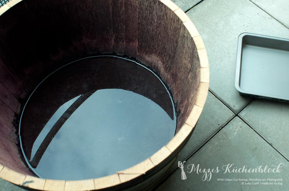Pflanzgefäß für die Brunnenkresse-Sprösslinge