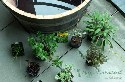 Wild Urban Gardening · Teil 1