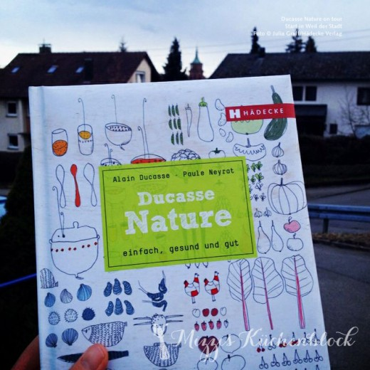 #ducassetour  · ein Kochbuch auf Reisen