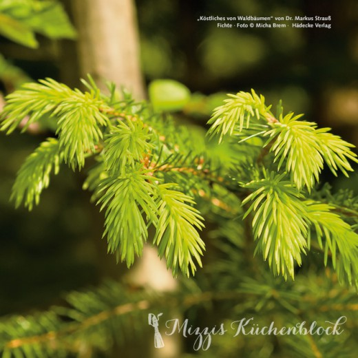 Natur & Genuss: Adventsgewinnspiel zum 3. Advent